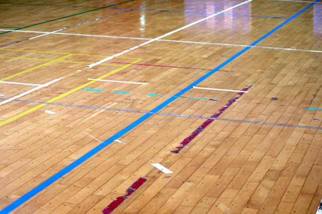 ハンドボール競技活動のためのガイドライン <br>(日本ハンドボール協会)2