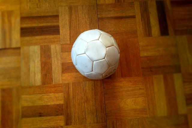 ハンドボール競技活動のためのガイドライン <br>(日本ハンドボール協会)3